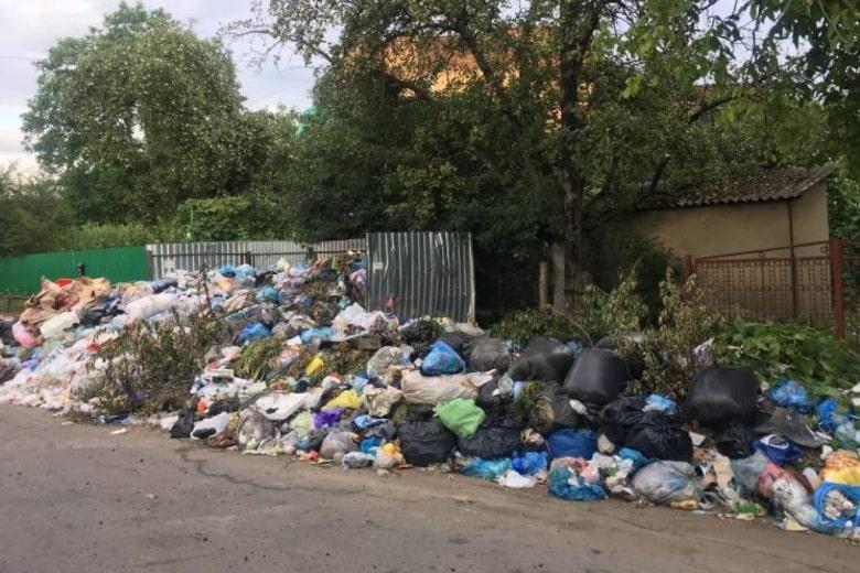 В Украине значительно увеличат штрафы за мусор