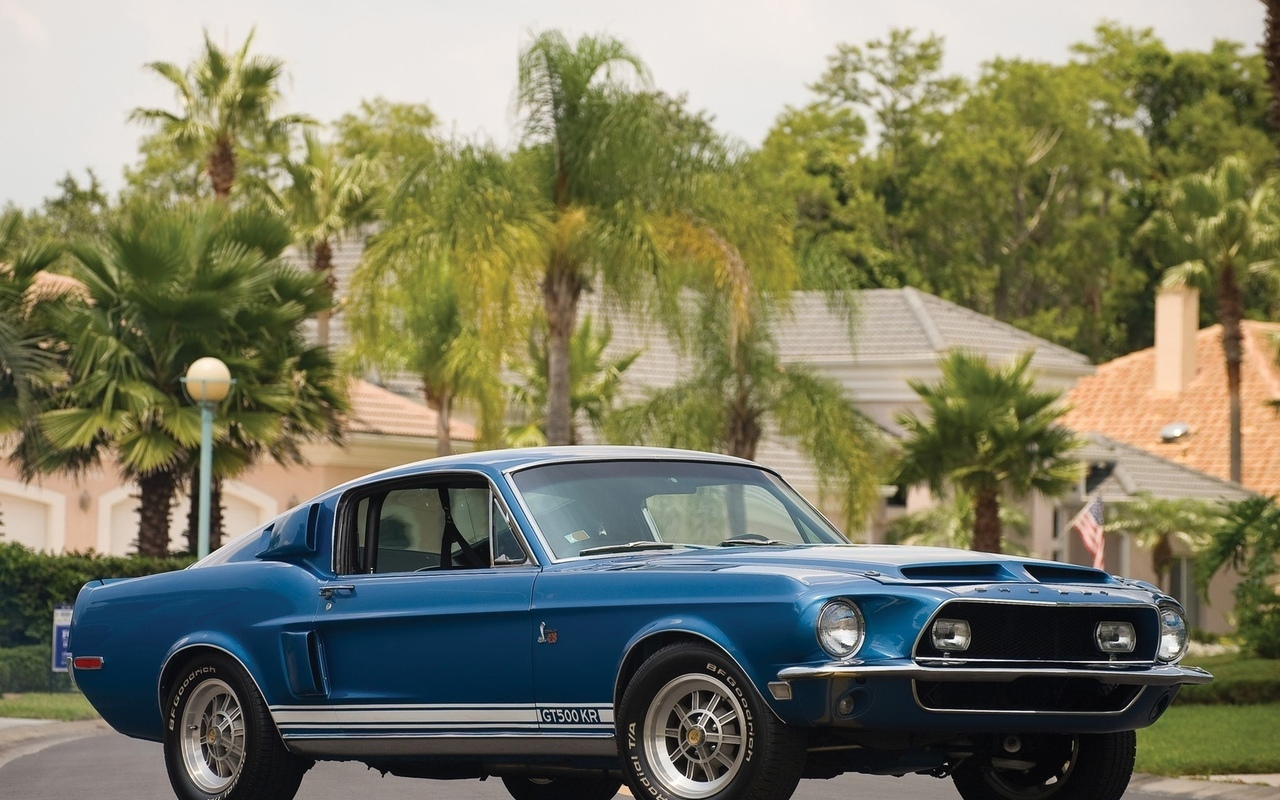 1968 год, mustang, gt500, shelby, ford