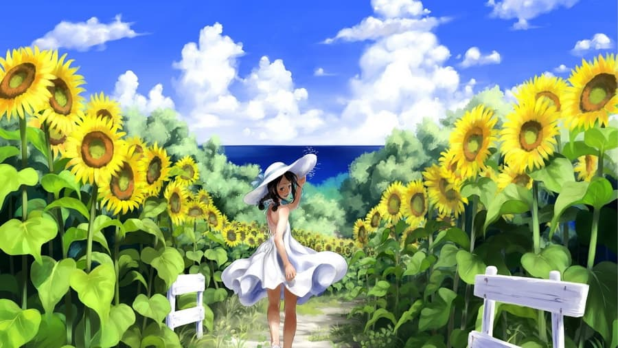 Картинки лето радуга цветы