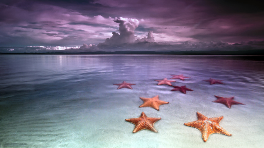 Звезды пляж топлесс 58
