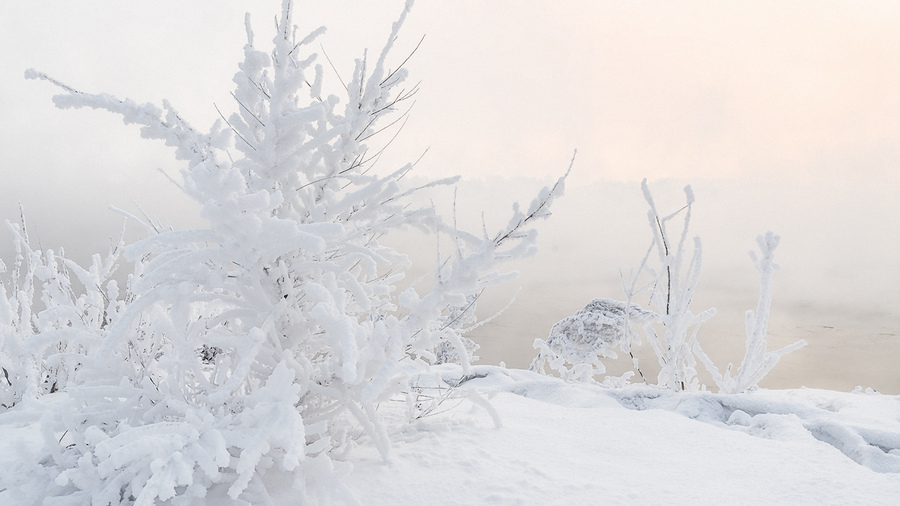 Картинки на компьютер бесплатно нежная зима