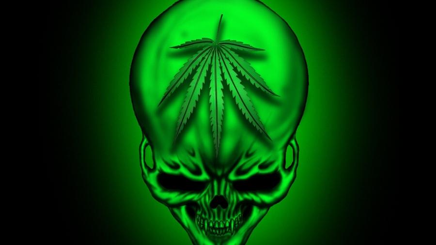 Картинка конопля рабочий стола марихуана выростить