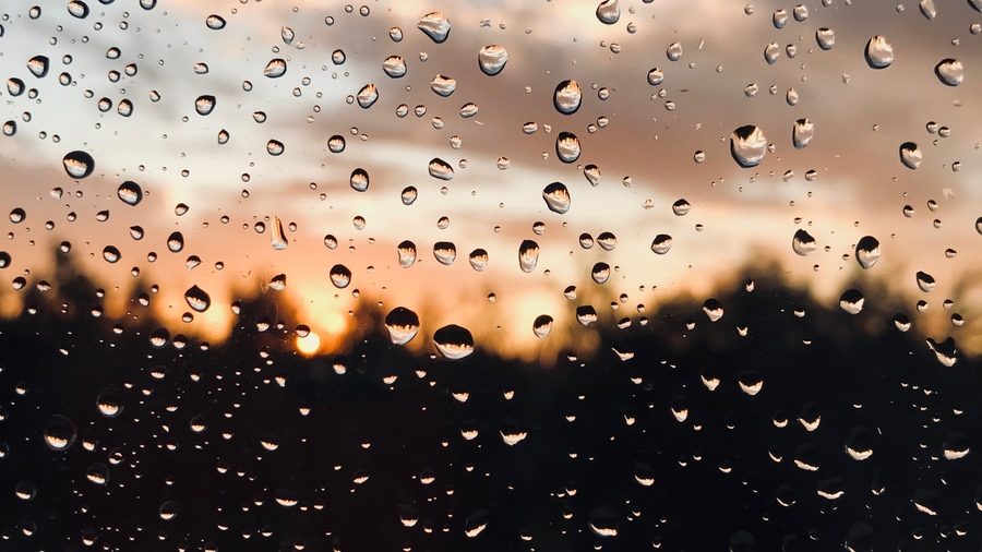 Дождь: удивительные факты об этом природном явлении