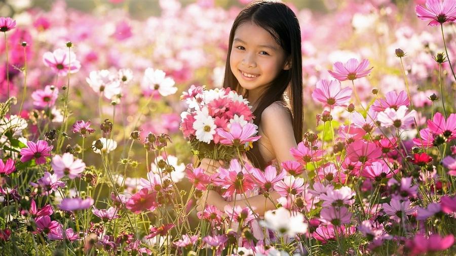 Интернет-магазине среди цветов, цветов доставка недорого