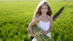 children, child, маленькая девочка, happiness, childhood, green field, Little girl ...
