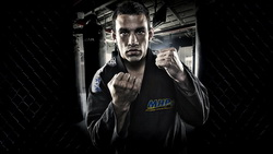 боец, strikeforce, ufc, Mma, fighter, fabricio werdum