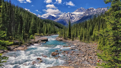 alberta, banff national park, национальный парк банф, Mistaya river, canada