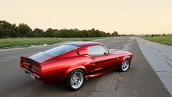 angle, shelby, rear, cr, gt500
