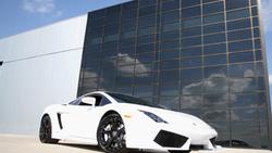 lp560 4, auto, cars, wallpapers, lamborghini gallardo