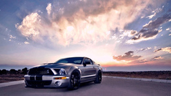 mustang, cobra, gt500, ford, shelby
