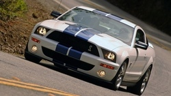 shelby, cobra gt500, mustang, ford