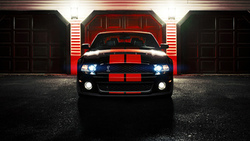 gt500, cobra, ronaldo stewart photography, ford, mustang, shelby