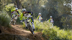 rocks, mountainbike, crazy, hill, downhill, freeride, dirt, bike, mtb, dh, mountain ...