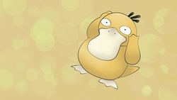 pokemon, psyduck