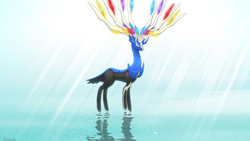 xerneas, pokemon
