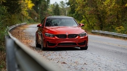 bmw road f80, red autumn, forest