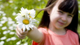 Romantic little girl , rose, happiness, cute, children, sunflower, beautiful, flower, child , smile