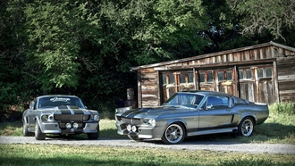 shelby eleanor, форд мустанг, gt500, Ford mustang