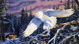 terry doughty, painting, живопись, Whisper on the wind, пейзажи, snow owl