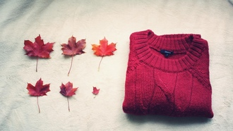 autumn, sweater, foliage