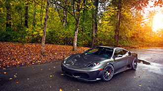 sun, green, autumn, wheels, trees, 430, ferrari, tuning, leaf, silver