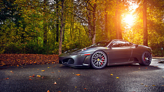 tuning, ferrari, trees, sun, leaf, wheels, 430, autumn, silver, green