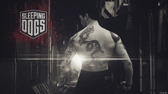 спальные, brian ho, Sleeping Dogs, Hong Kong, Брайан Хо, Гонконг, martial arts, боевые искусства, sleeping