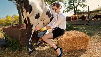 модели, stock photo, коровы, cows, women, models, фото, женщин