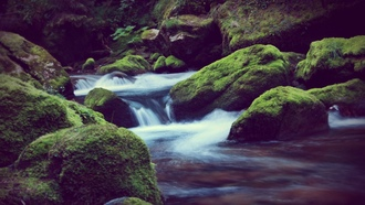 ручьи, скалы, moss, water, streams, мох, rocks, nature, вода, природа