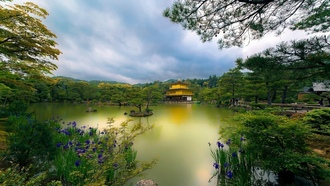 golden pavilion, japan, temple, kyoto