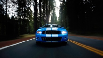 Ford, Shelby gt500, дорога, лес