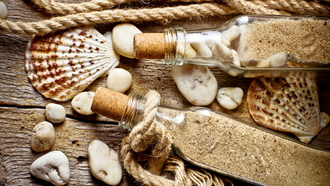 shell, stones, rope, bottle, old wood, sand