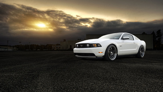 ford, mustang, белый, white, 5.0, muscle car, мустанг, front, форд, gt