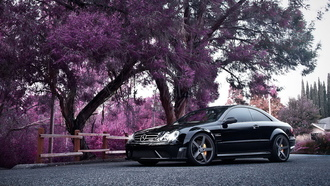 деревья, mercedes benz, купе, мерседес, автомобиль, black series, clk, розовые