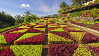 madeira, formal gardens, portugal