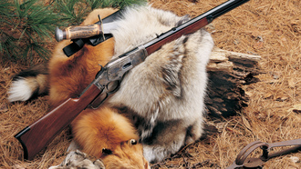 rifle, carabine, fox