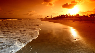sunrise , nature, sky, beach, scene, water, palms, clouds, waves, sea, beautiful, landscape