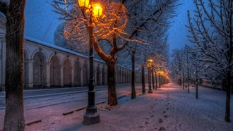 lights, trees, парк, winter, walk, street, park, path, nature, snow, природа, road
