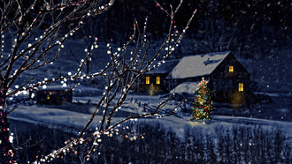 houses, city, nature, new year, town, christmas tree, merry christmas , magic christmas night