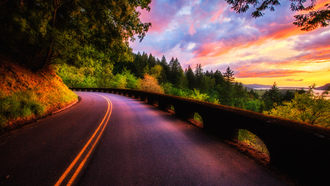 trees, forest, road, природа, colors, view, clouds, sky, scenery, landscape, nature, sunset