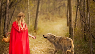 red and wolf, девочка, лес, волк
