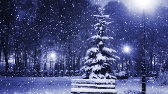 magic christmas night, christmas tree, nature, trees, new year, merry christmas, snow, town, winter