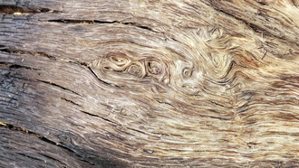 texture, abstract, wood