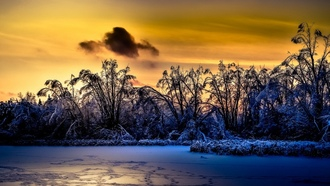 sunlight, winter, landscape, nature