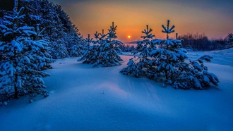 landscape, snow, winter, trees, nature, sunset, cold, sea