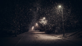 landscape, nature, street, light, snow, trees, night, urban, shrubs, calm, winter