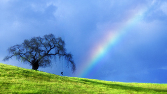 ainbows, and, ightnings, ull, allpapers