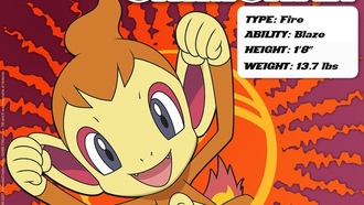 pokemon, chimchar