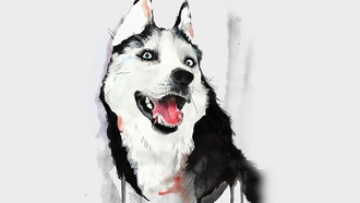 собаки, хаски, порода, husky, animal illust, watercolor, iphone, ipad, retina