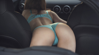 women, Jack Russell, lingerie, tanned, back, women with cars, car, ass